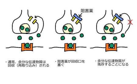 再取り込阻害薬.jpg