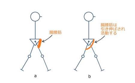 歩行腸腰筋.JPG