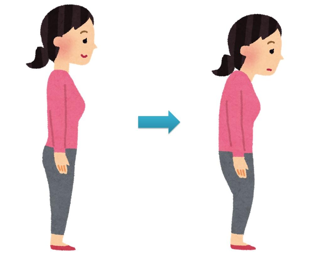 「無料画像 姿勢」の画像検索結果