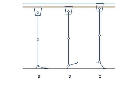 脚の長さの変化.jpg