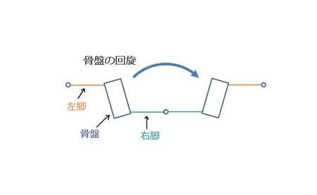 骨盤の回旋1.jpg
